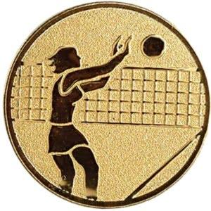 MS65 300x300 - Sentermerke Kvinnelig voleyballspiller MS65