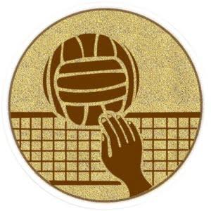 MS66 300x300 - Sentermerke Volleyball MS66