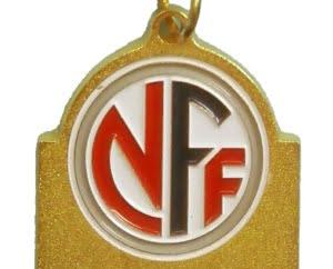 NFF featuredimage 300x242 - Norges Fotballforbund - Kretser