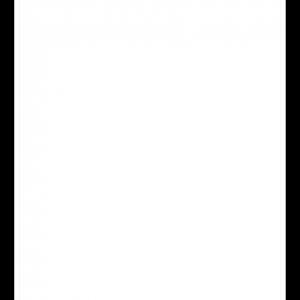 Klassisk startnummer med trykk 1