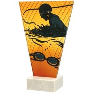 NDSWIM 300x300 - Glasstrofé Svømming