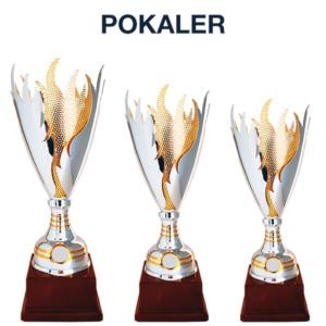 Fokus Pokaler 300x300 - Premier og Profilering