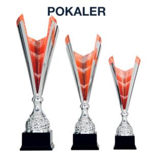 Fokus Pokaler 300x300 - Forside